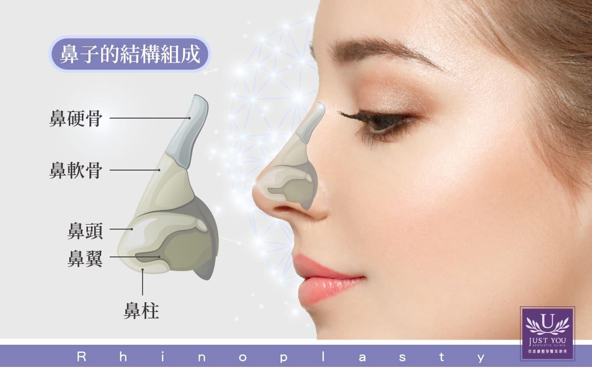 隆鼻手術鼻子結構