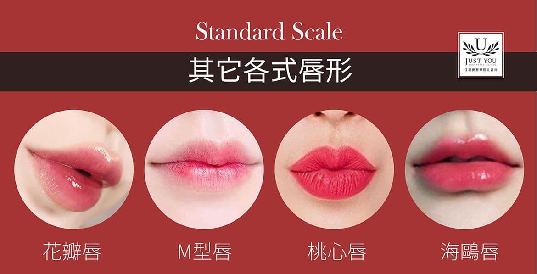 法式微笑嘟嘟唇与各种受欢迎的唇形