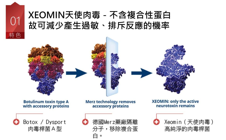天使肉毒最大的產品優勢為不含複合性蛋白質,不易產生抗原抗體反應